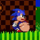 Sonic 2 XL Game Online